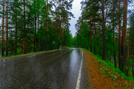 Road and forest in the Punkaharju ridge. Shouthern Savonia, Lakeland region, Finland