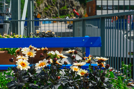 suomi: View of the flowers and a bench on the Theatre bridge, in Turku, Finland