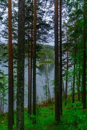 Landscape of lakes and forest along the Punkaharju ridge. Shouthern Savonia, Lakeland region, Finland Stock Photo