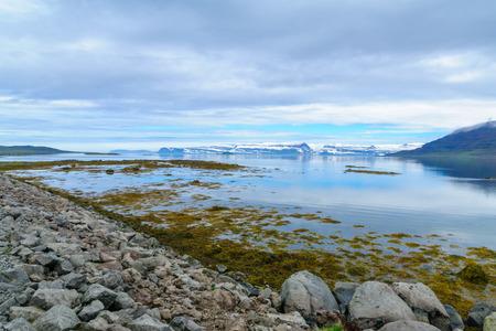 Coastline, landscape and seals along the Skotufjordur fjord, in the west fjords region, Iceland