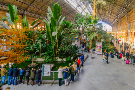 MADRID, SPAIN - JANUARY 1, 2018: View of the Interior plaza and garden in the old Atocha station, with locals and visitors, in Madrid, Spain