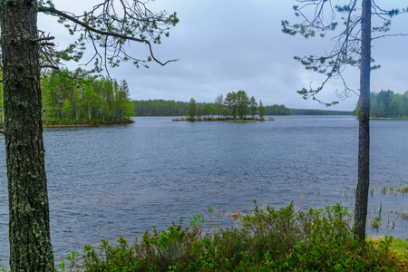 View of a lake with trees and an island in Juuma, Northern Ostrobothnia region, Finland