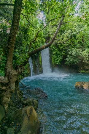 The Banias (Banyas) waterfall in the Hermon Stream (Banias) Nature Reserve, Northern Israel Banque d'images