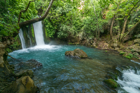 The Banias (Banyas) waterfall in the Hermon Stream (Banias) Nature Reserve, Northern Israel Stok Fotoğraf