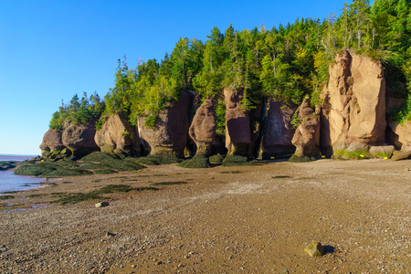 View of Hopewell Rocks at low tide. New Brunswick, Canada 版權商用圖片