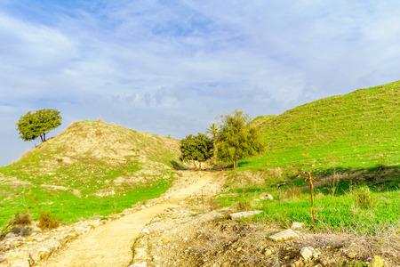 View of the Tel Megiddo National Park. Northern Israel