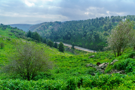 Landscape of the Upper Galilee in a cloudy day, northern Israel 版權商用圖片
