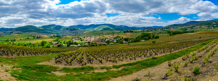 Panoramic landscape of vineyards and countryside in Beaujolais, with the village Lantignie. Rhone department, France Banco de Imagens