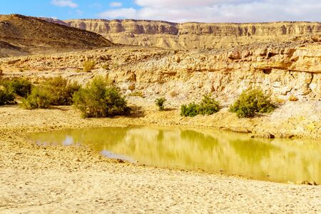 View of water pond and landscape in the Holot Tsivoniyim (colorful sand) site, part of Makhtesh (crater) Ramon, in the Negev Desert, Southern Israel