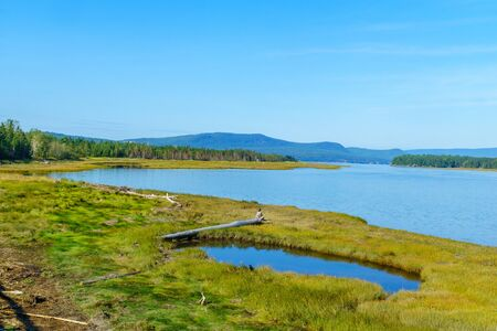 Landscape of forest and pools in the Penouille sector of Forillon National Park, Gaspe Peninsula, Quebec, Canada