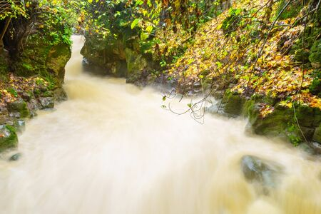 View of strong winter waterflow in the Banias River (Nahal Hermon). Part of the Banias Nature Reserve, Northern Israel. Long exposure Standard-Bild
