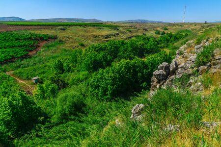 Landscape of the Snir Stream (Hasbani River) Nature Reserve, Northern Israel