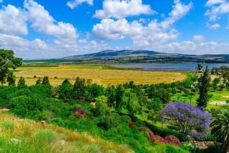 Landscape of Harod Valley and the Jezreel Valley, with Maayan Harod National Park. Northern Israel