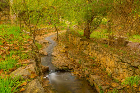 View of the Kesalon Stream with trees, and fall foliage, in En Hemed National Park (Aqua Bella), west of Jerusalem, Israel