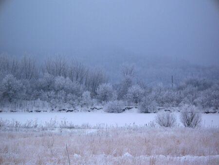 Winter scene Фото со стока