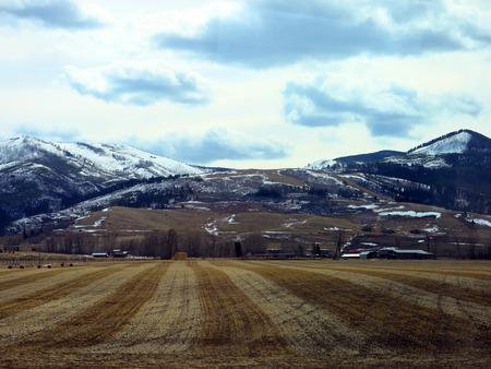 Plowed Marked Field