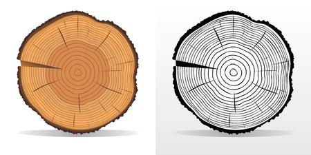 tronco: Ilustración del vector de anillos de árbol texturas y corte de sierra tronco de árbol Vectores