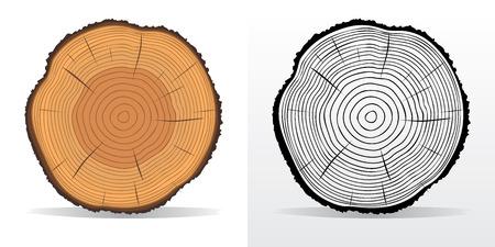 ringe: Vektor-Illustration von Baumringen Texturen und sah Baumstamm geschnitten