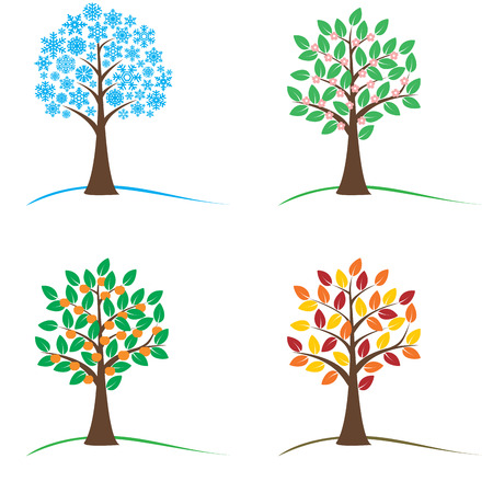 winter tree: Tree in four seasons - spring, summer, autumn, winter.  vector illustration. Isolated on white background.