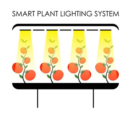 smart lighting system for plants in the greenhouse. Efficient agriculture, green technology. Isolated vector on white background