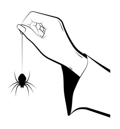 female hand of sorceress holds a huge spider on web. Celebration of Halloween in fancy dress. Magic and witchcraft, rituals.