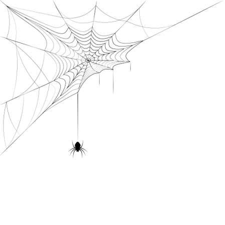 spider on corner web. Design element for Halloween.