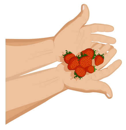 man holds ripe juicy strawberries in his palms. Summer fruits and vitamins. Sweet treat for children. Cartoon vector on white background