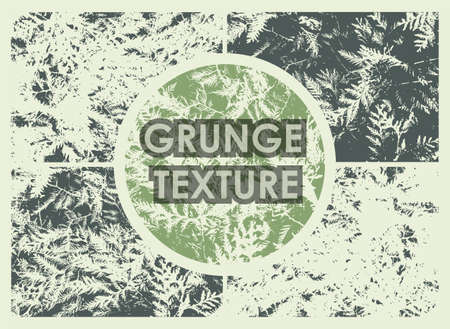 set of conifer tree grunge textures with different number of spots on transparent background. Texture of old poster background. Vector