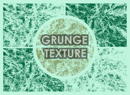 set of evergreen tree grunge textures with different number of spots on transparent background. Texture of old poster background. Vector