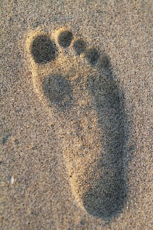 footmark: Footprint on the sand with sunset lighting Stock Photo