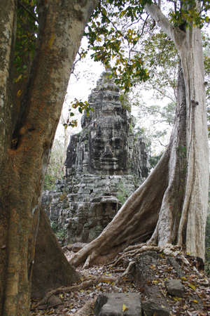 bayon: A face tower in one of the gates of Angkor Thom in Siem Reap, Cambodia