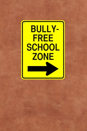 A modified one way street sign pointing to a bully-free school zone  photo