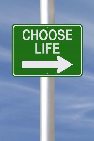 人生の選択を示す変更された 1 つの方法ストリート サイン
