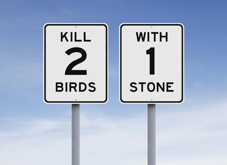 kill: Modified speed limit signs indicating Kill Two Birds With One Stone