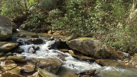 Appalachian Mountain Stream photo