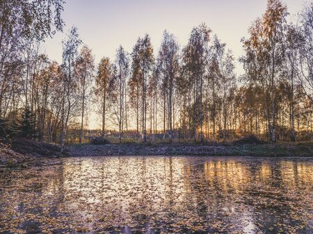 Beautiful Photo of a Frozen Lake in Sunny Autumn Day in an October, with a Sun Shining Directly at Camera Through the Trees - vintage look edit