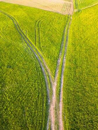 Drone Photo of the Road Between Fields in Colorful Early Spring in Countryside Village  - Surrounded with Dandelions. Top Down View