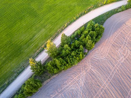 Drone Photo of the Road Between Trees in Colorful Early Spring in Countryside Village  - Freshly Mowed Field on the one Side and Cultivated Field on the other Banco de Imagens