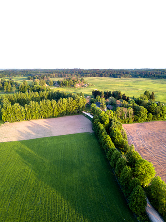 Drone Photo of the Road Between Trees in Colorful Early Spring - Surrounded with Freshly Cultivated Field and some Buildings and Birch Square Banco de Imagens