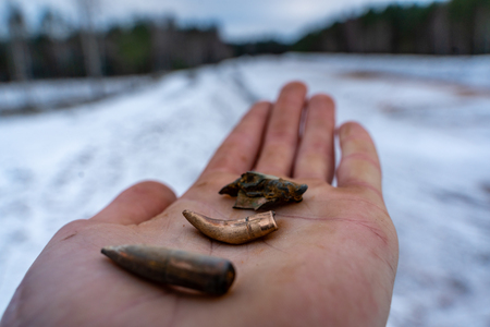 Different Stages and Forms of Bullets after Been Shot - Bent and Destructed Held in Palm 写真素材