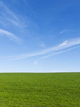 Hermoso campo verde con un cielo azul claro Foto de archivo