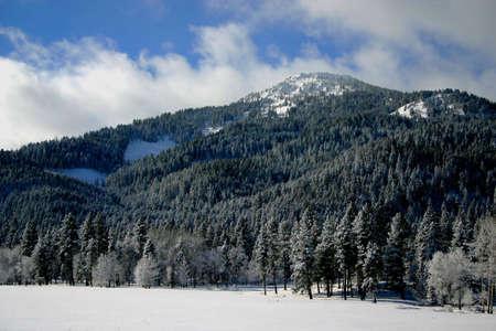 Valley County Idaho Reklamní fotografie