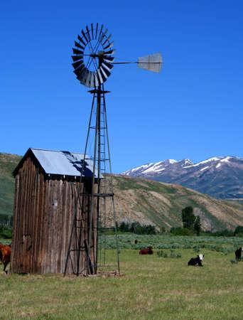 Rural Idaho Farm Scene