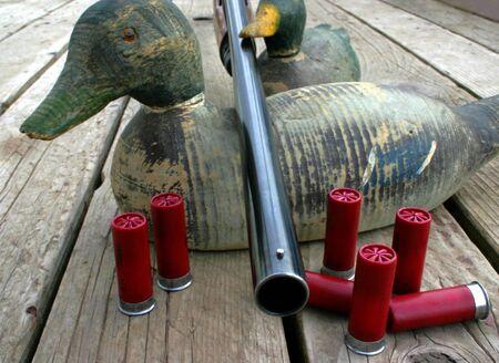 12 gauge shotgun resting on antique duck decoys