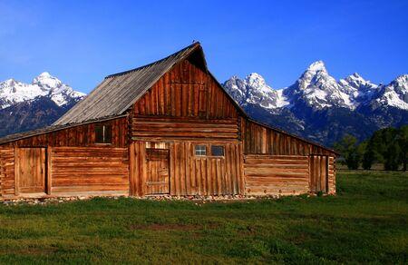 teton: Granaio storico situato sulla fila mormonica, grande parco nazionale di Teton, Wyoming