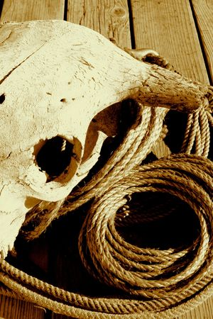 rounder: Rope And Skull In Sepia Tone Stock Photo