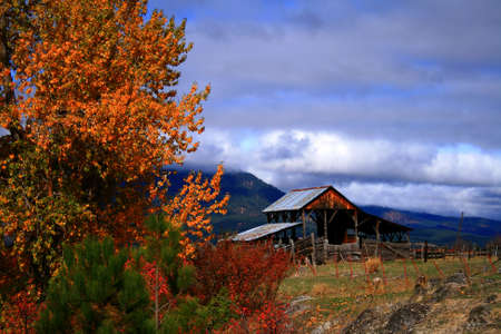 Rustic barn with autumn colors in central Idaho Stock Photo - 1977966