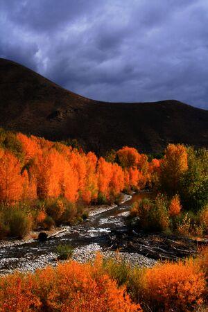 View of the Big Wood River south of Ketchum Idaho, autumn Reklamní fotografie