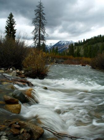 Baker creek flows towards Big Wood River in the Sawtooth National Recreation Area, Idaho