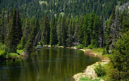 North fork of the Payette River as it heads into Payette Lake, McCall Idaho Reklamní fotografie